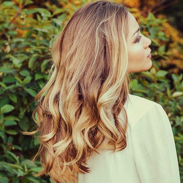 willow yukon organic hair salon